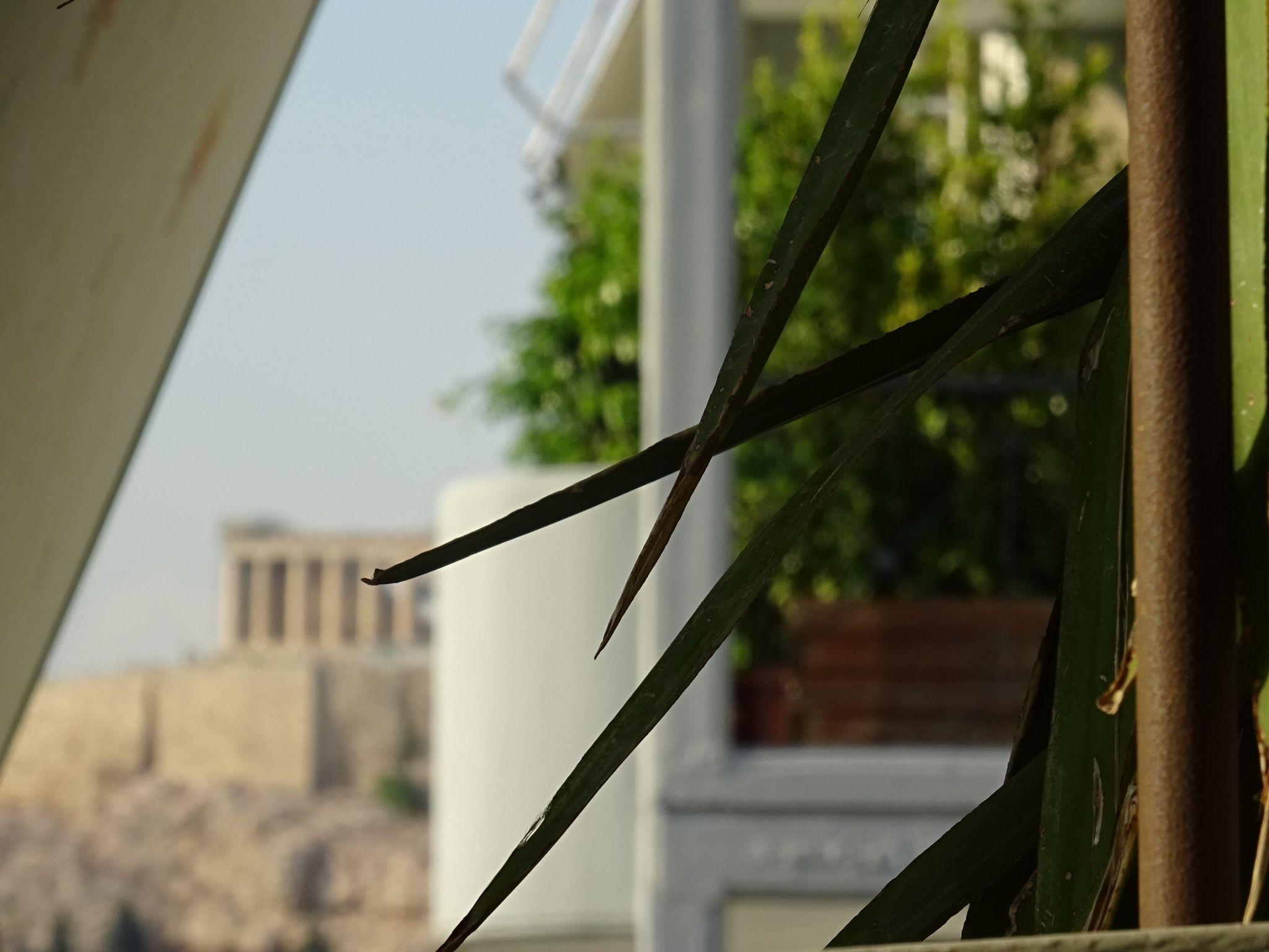 Park View Apartment Near Acropolis