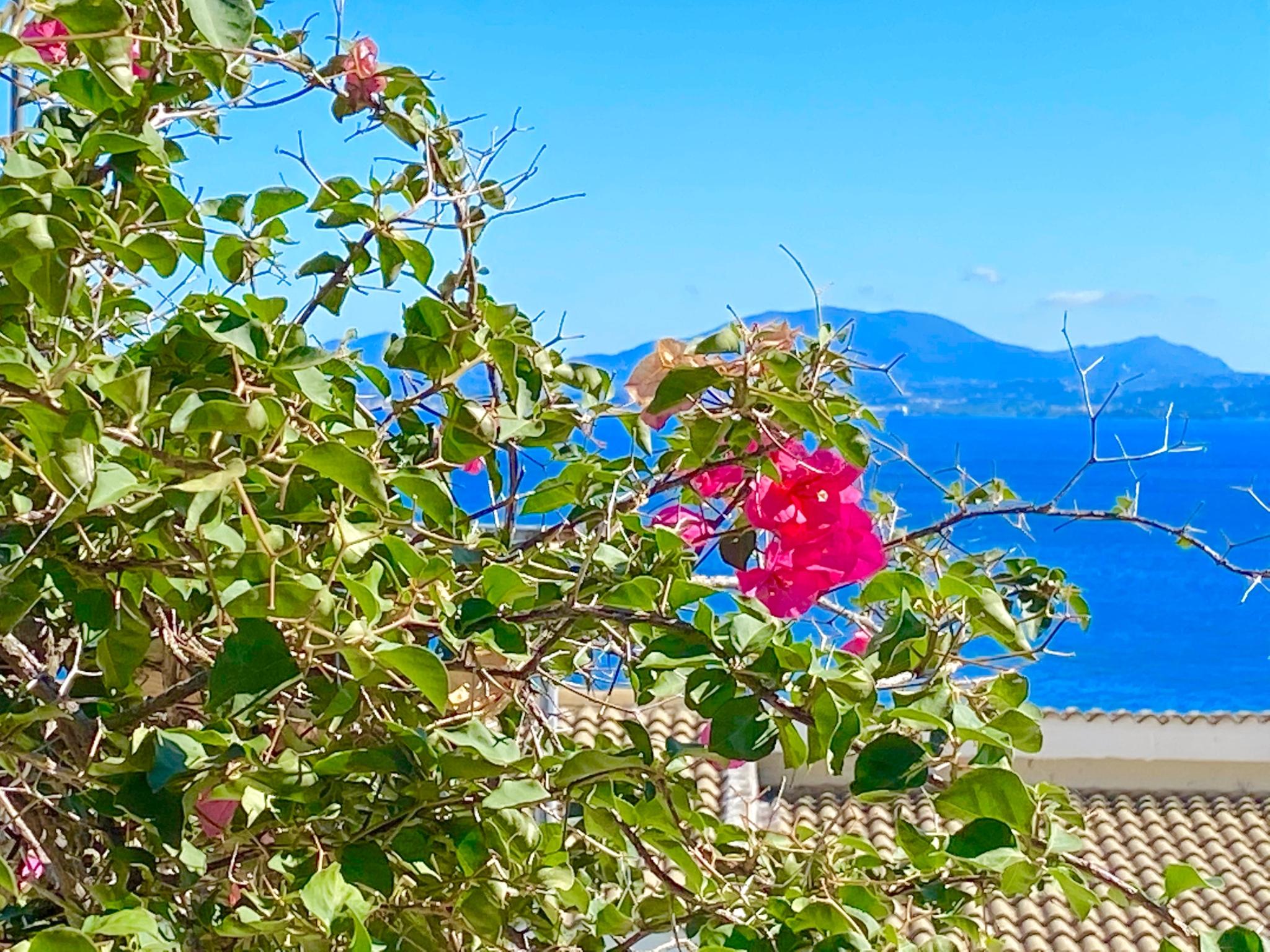 Holiday apartment Nissaki Sunflower Luxury Apartment (2798249), Nissala, Corfu, Ionian Islands, Greece, picture 3