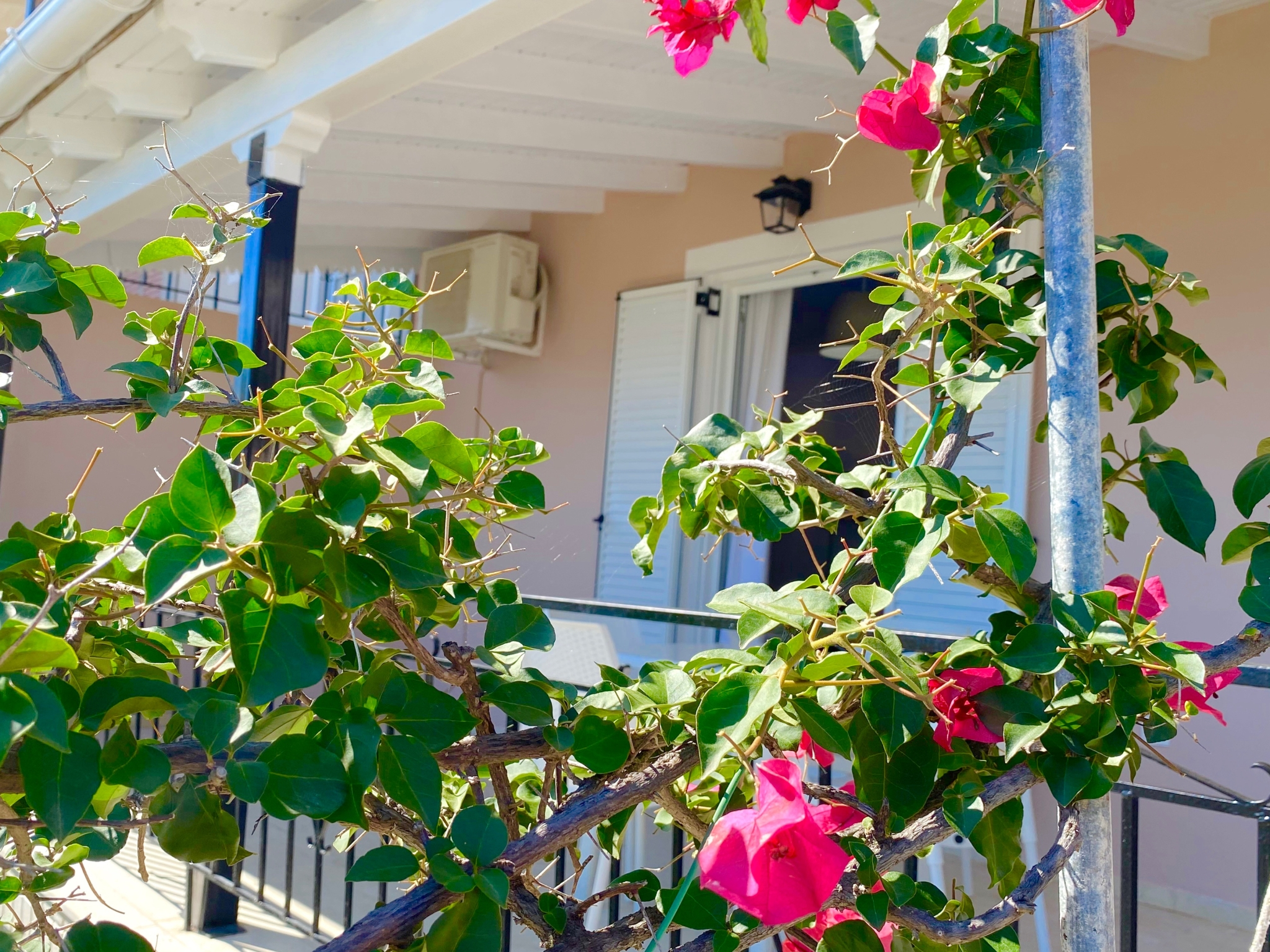 Holiday apartment Nissaki Sunflower Luxury Apartment (2798249), Nissala, Corfu, Ionian Islands, Greece, picture 2